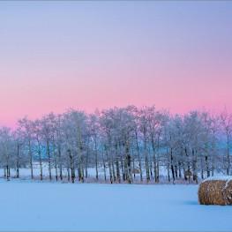 dawn-hoar-frost-landscape-christopher-martin-9565